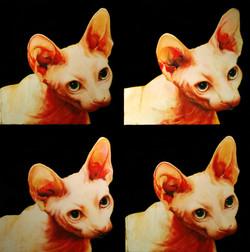 catherine mcinnis art peintre chat