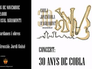 Concert Cobla
