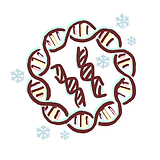 plasmidDNAfragments.png