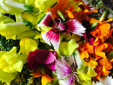 Using edible flowers every day