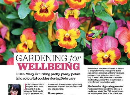 Gardening for Wellbeing with Pretty Pansies