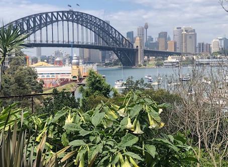 Wendy's Secret Garden in Sydney