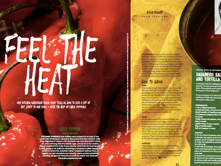Feel the Heat with Chilli Peppers