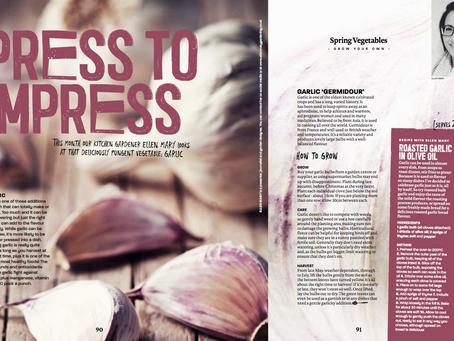 How to grow & roast Garlic
