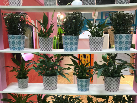 My Top 5 New Products at GLEE 2018