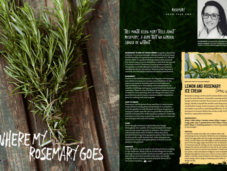 Where My Rosemary Goes