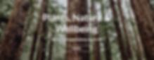 Screen Shot 2020-03-01 at 17.59.08.png