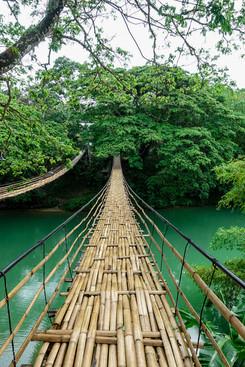 Twin Hanging Bridge
