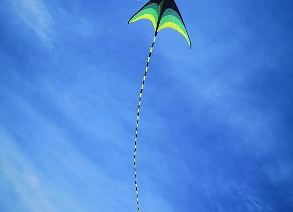 Воздушный змей Дельтавидный