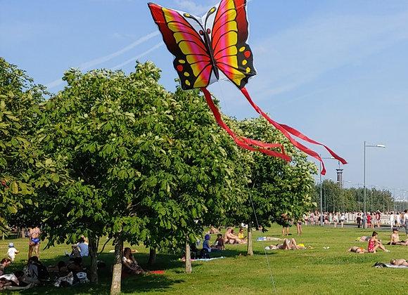 Воздушный змей Бабочка