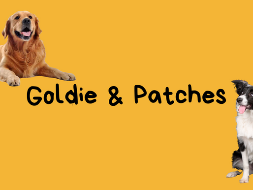 Character Spotlight: Goldie & Patches