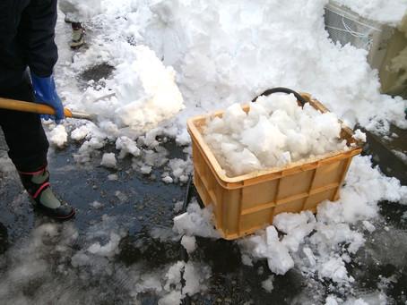 我が社の雪消し方法