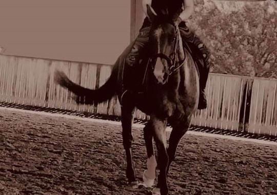 4Him Ranch Training