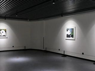 Inaugural Exhibition at Panda International Art Center Chengdu