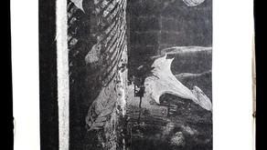 Cartaz de um show do Blues na Floresta (1993)