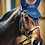Thumbnail: Dy'on Fancy Browband