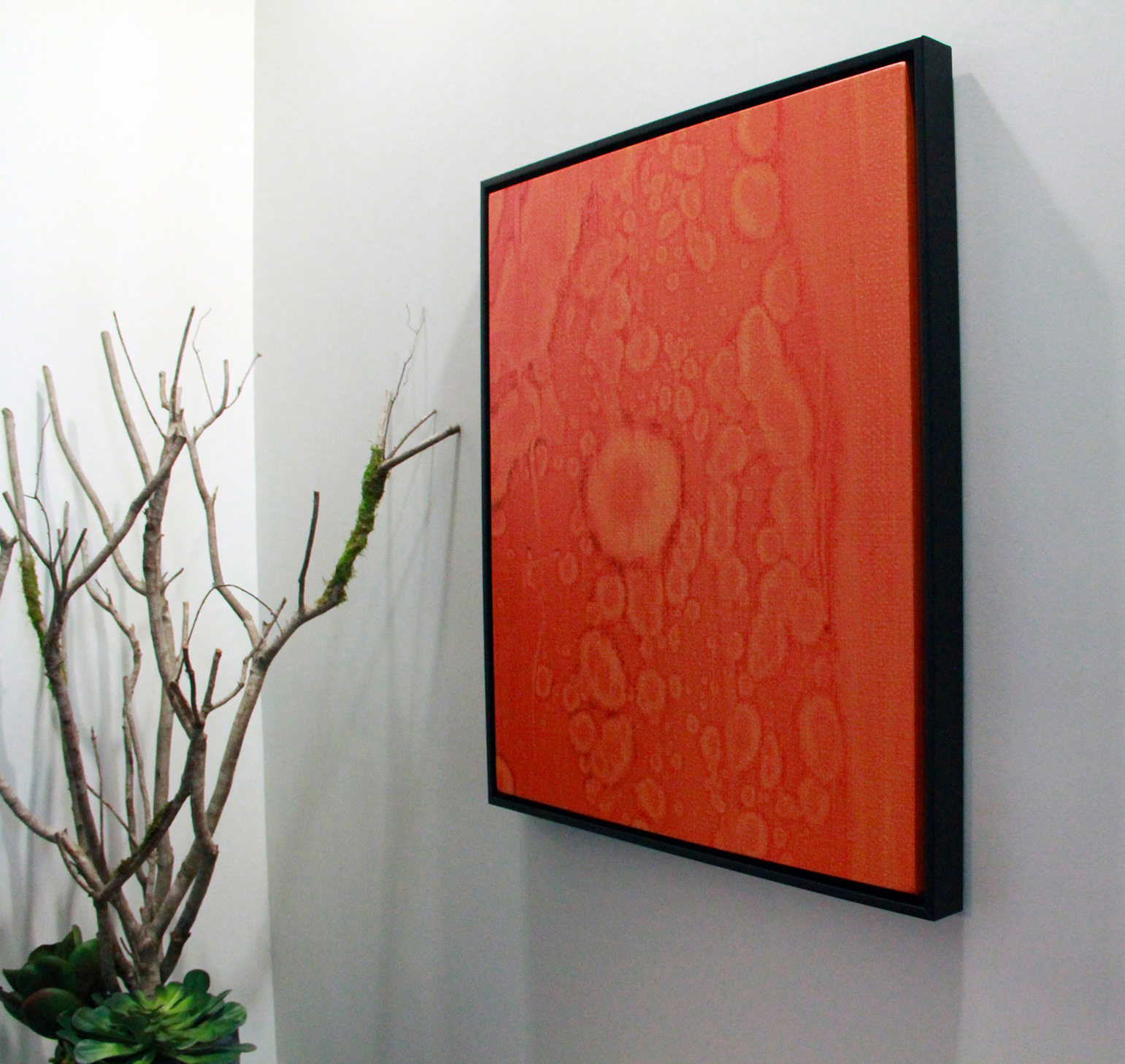 Orange cell canvas