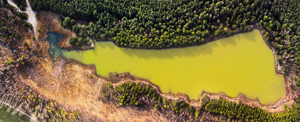 Roter See bei Burgkemnitz