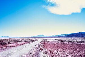 one day on a salt flat