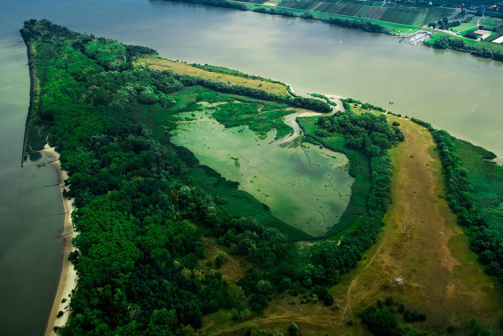 Insel Neßsand in der Elbe bei Hamburg