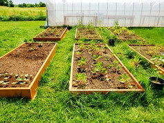 Our boxes are ready to grow