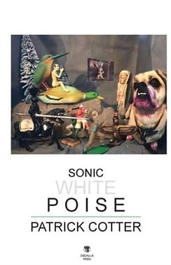Image shows cover of Sonic White Poise by Patrick Cotter