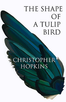 The-Shape-of-a-Tulip-Bird.jpg