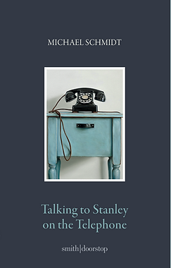 Cover of Talking to Stanley on the Telephone