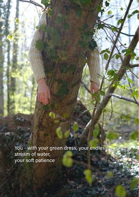 creatures in the woods #4