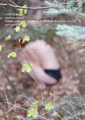 creatures in the woods #1