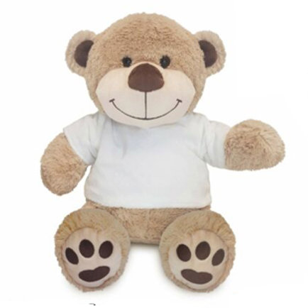 New Modern Teddy - Limited Quantity