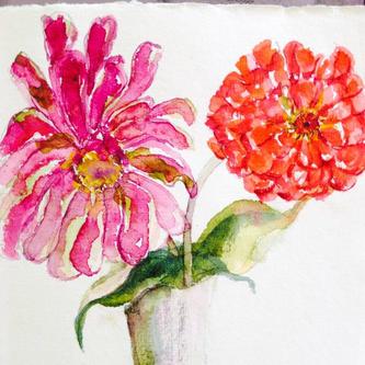 Rose Ellens zinnias.jpg