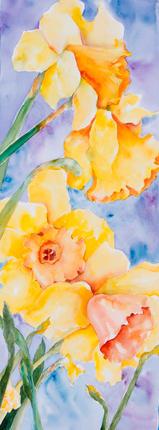 Daffodil Dance