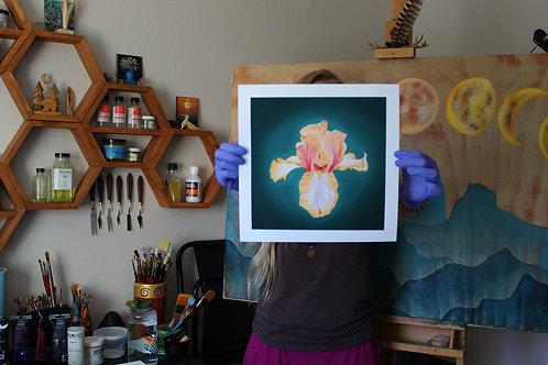 Iris archival prints