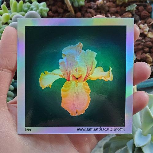 Iris holographic stickers