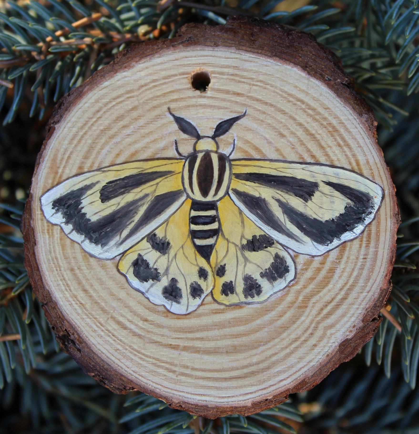 Nais Tiger Moth