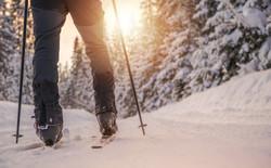 cross-country-skiing-MY953E2