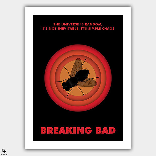 Breaking Bad Minimalist Poster - Fly