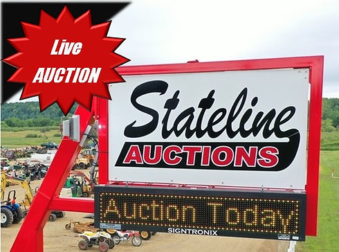 Small Live Auction .jpg