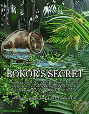 #6 BOKOR's SECRET Poster AD.jpg