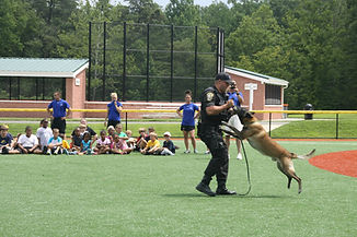 Sunshine Ballpark Foundation Programs Fredericksburg VA