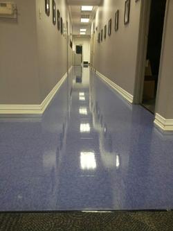 Floor Care!