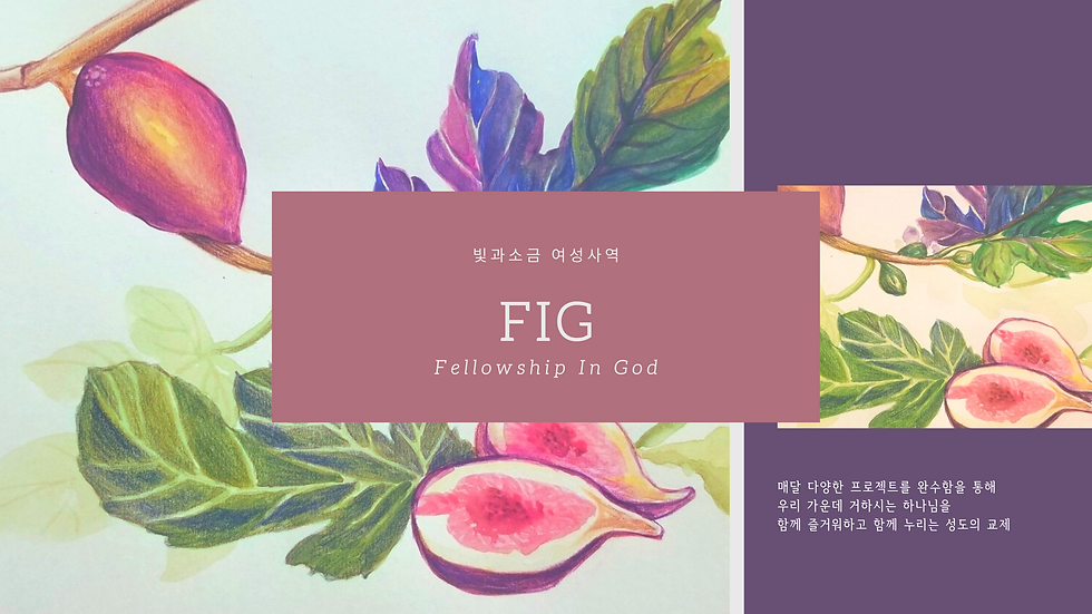 FIG (10).png