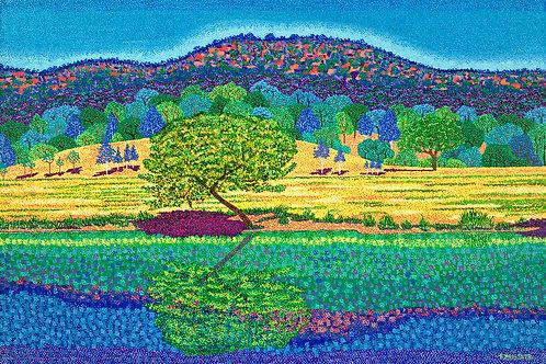 Tree Reflection - Oil Artwork