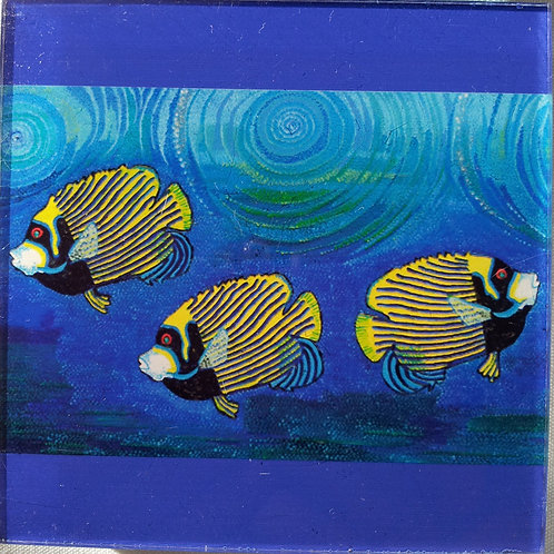 Coffee Mat/Drink Coaster - Angle Fish (Acrylic)