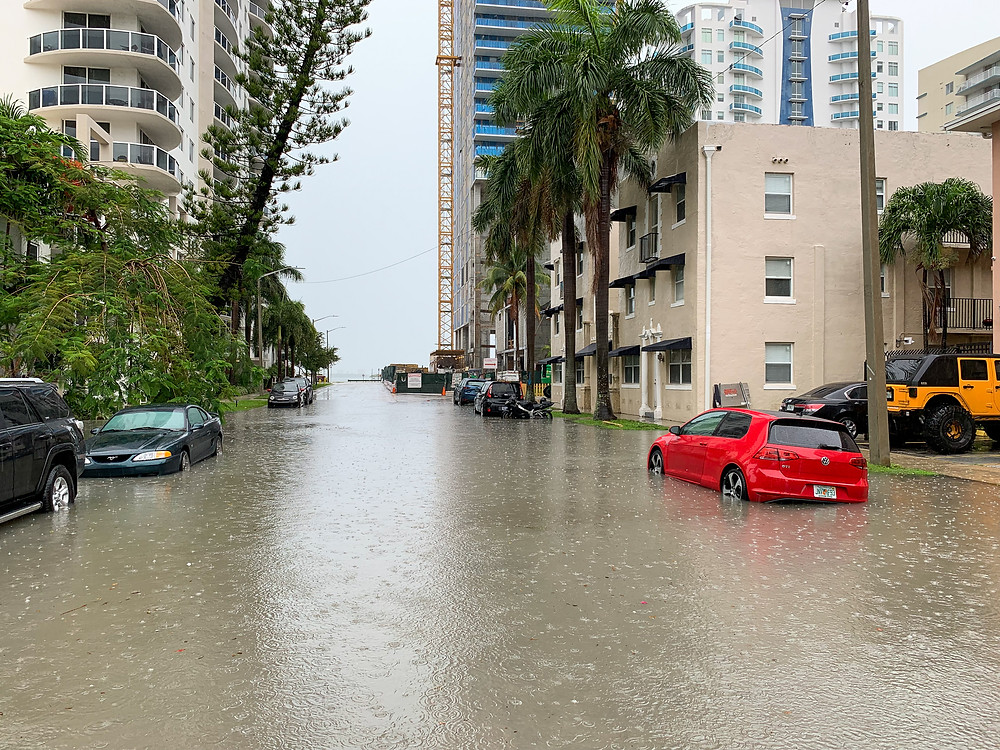 Flooding on NE 23rd Street, Edgewater Miami, 2019-06-16