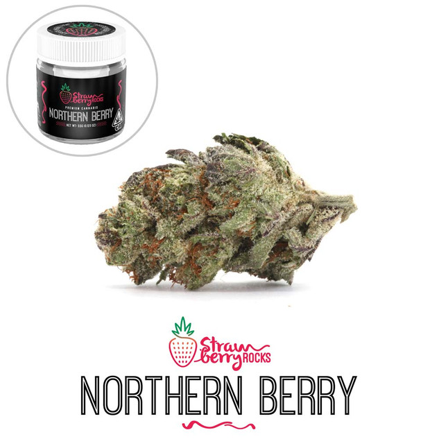 SR - Northern Berry (flower and jar).jpg