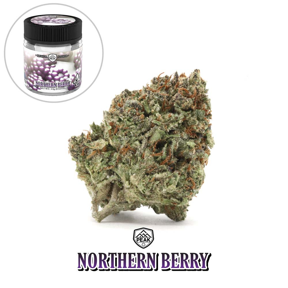PEAK - Northern Berry 04 (flower and jar
