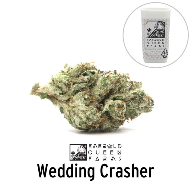 Emerald Queen - Wedding Crasher (flower