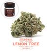 Royal Budline INDOOR - Lemon Tree (flower and jar).jpg